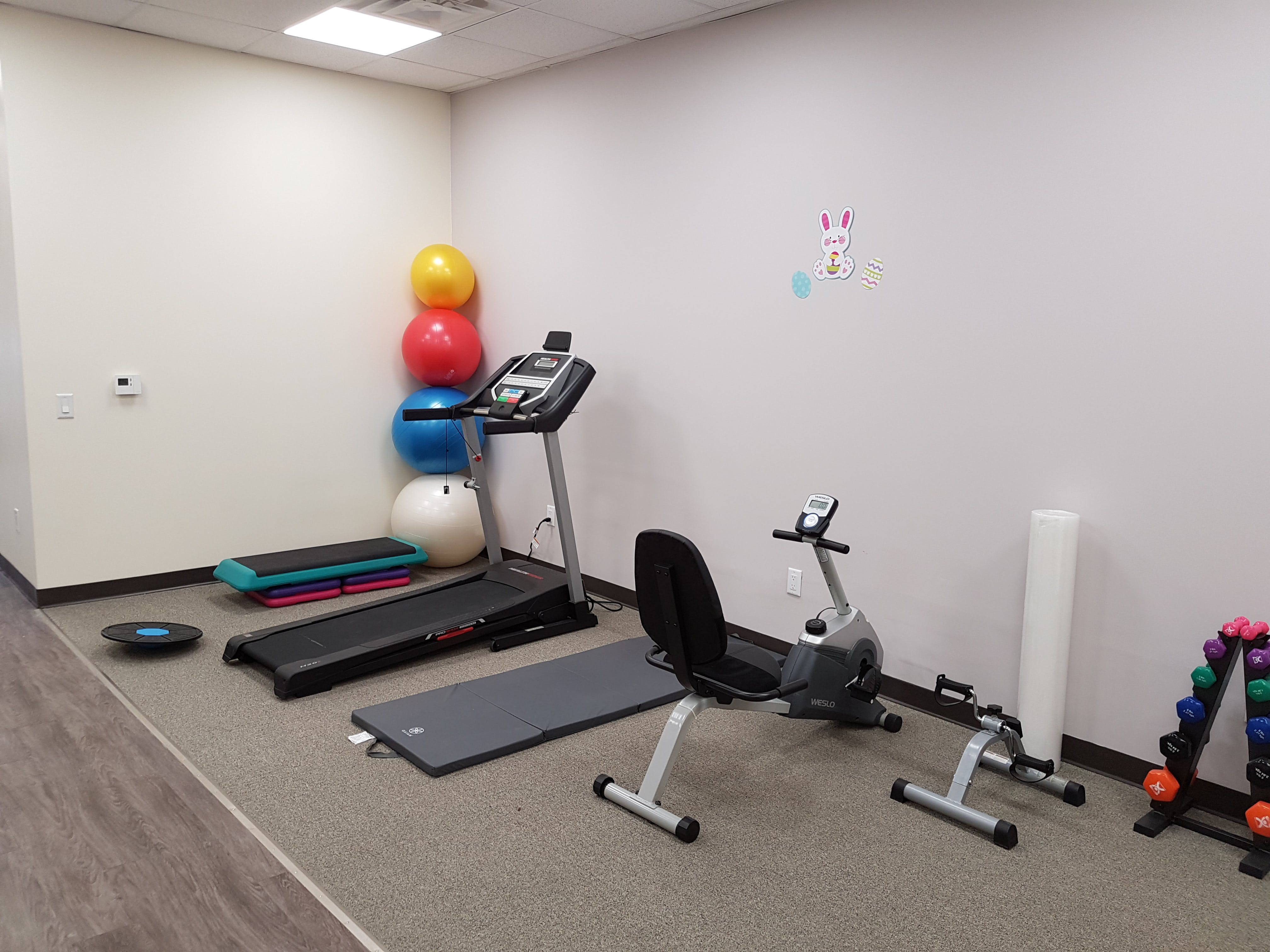 Photograph of Fotis Physio and Wellness Barrie's gym area
