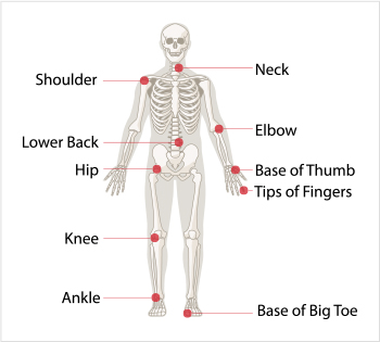 Diagram of the joints most often affected by osteoarthritis - neck, shoulder, elbow, lower back, base of thumb, hip, tips of finger, knee, ankle, and the base of the big toe